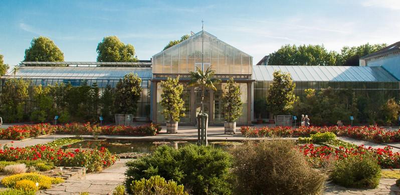 20140612-8768-ML*-Botanischer Garten