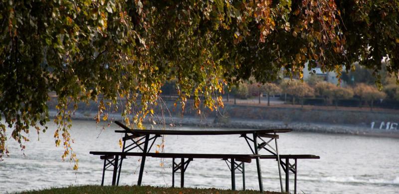 20121027lichtemomente-1154