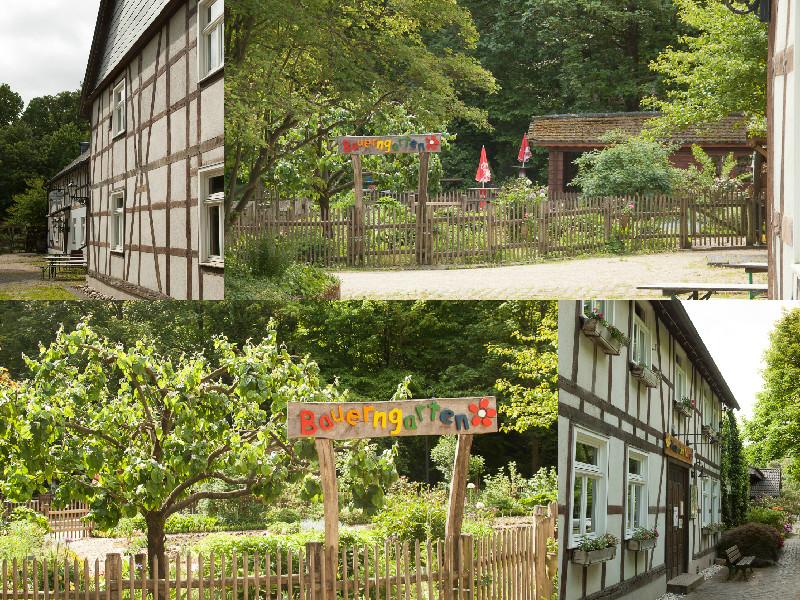 20150519Lichtemomente-Waldau Haus der Natur