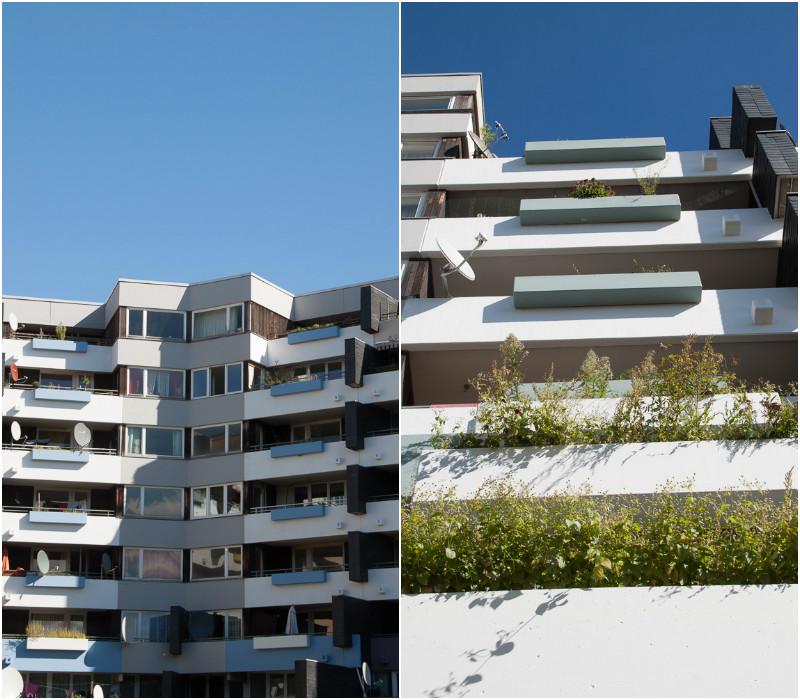 Neu Tannenbusch Hochhäuser