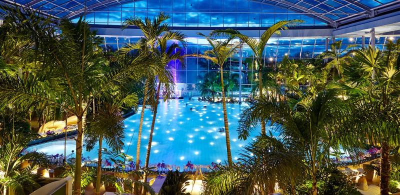 Panorama-Palmenparadies_Nacht